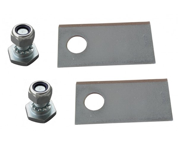 Set of 2 blades and 2 bolts for 4-blade discs